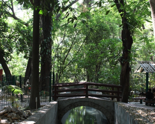 Jardín Botánico Doctor Faustino Miranda, Chiapas