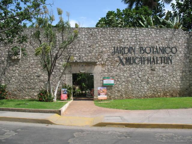 Jard n bot nico xmuch halt n campeche turimexico for Jardin botanico xmuch haltun