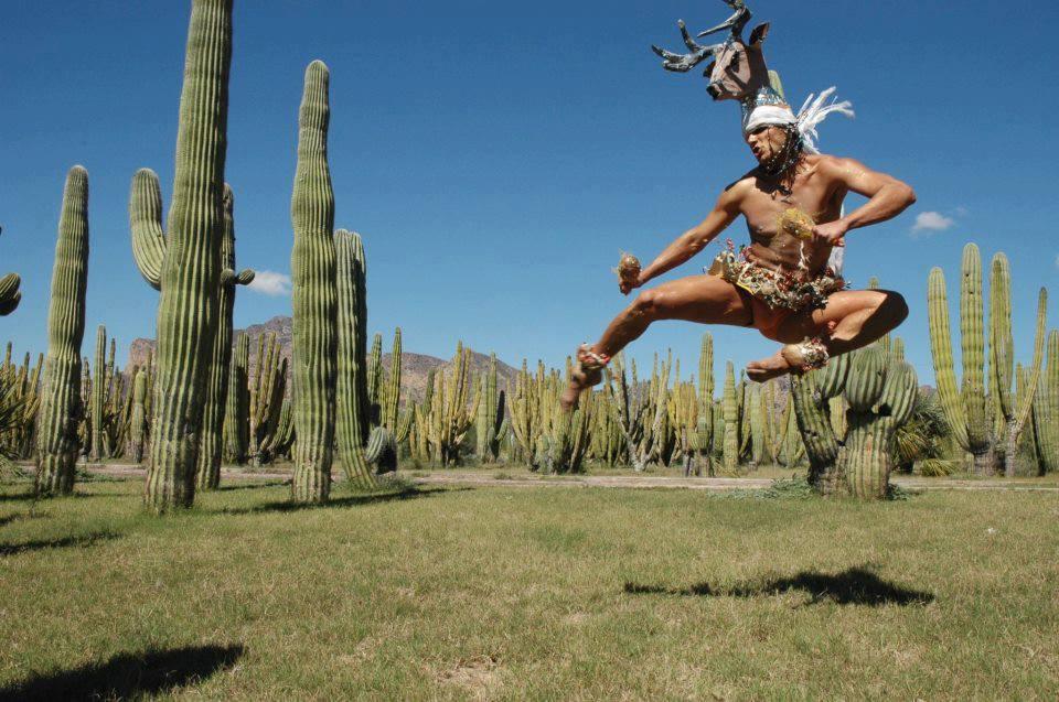 Cultura de Sonora