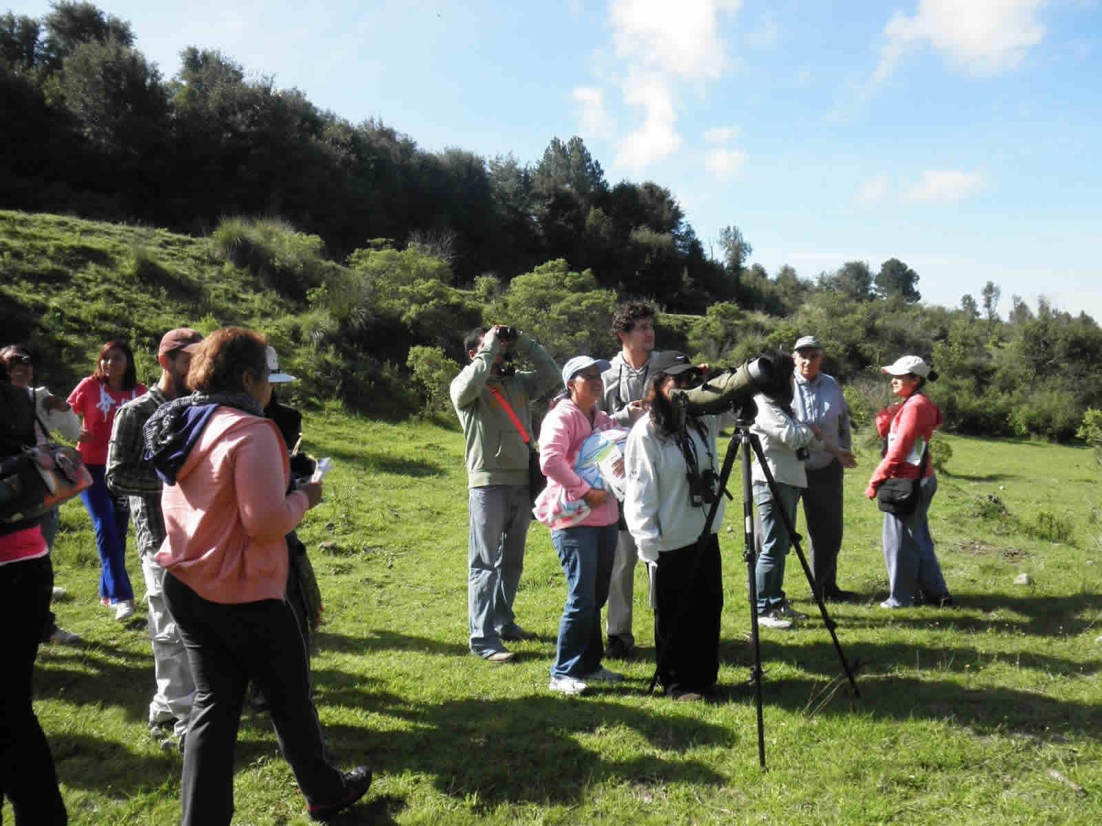 Observación de Aves en Puebla