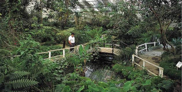 Jardín Botánico de Tizatlán, Tlaxcala