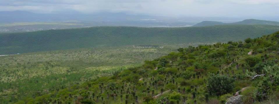 Parque Nacional el Cimatario, Querétaro