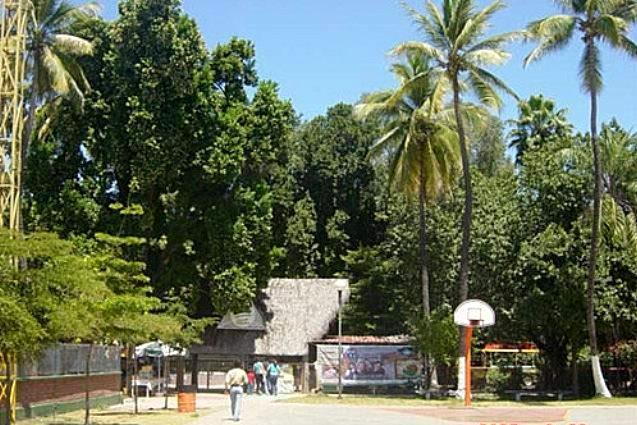 Parque Constitución, Sinaloa