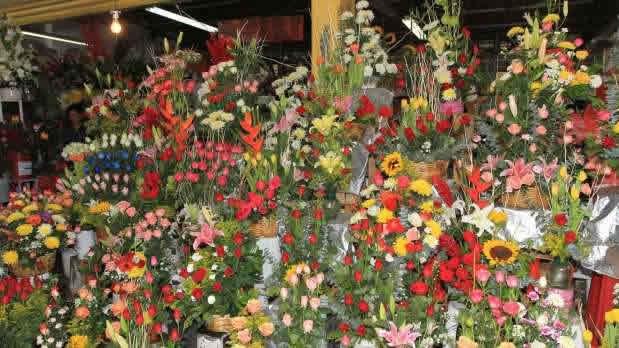 Feria de las Flores de San Ángel, Ciudad de México