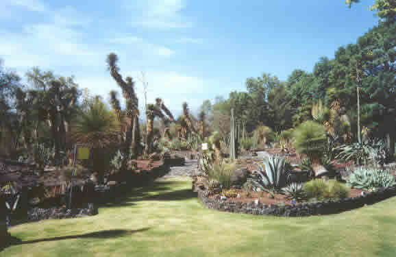 Jardín Botánico de Ciudad Universitaria, Ciudad de México