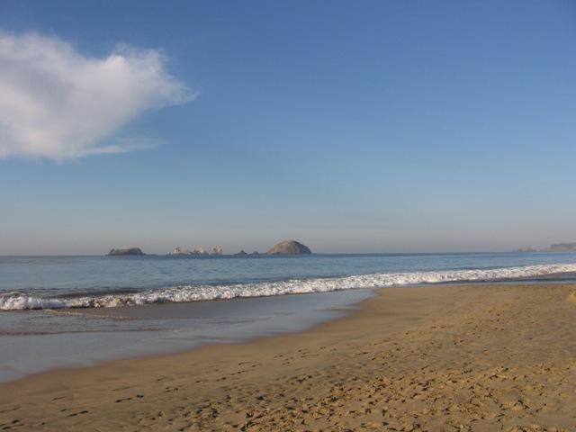 Playa El Palmar, Guerrero