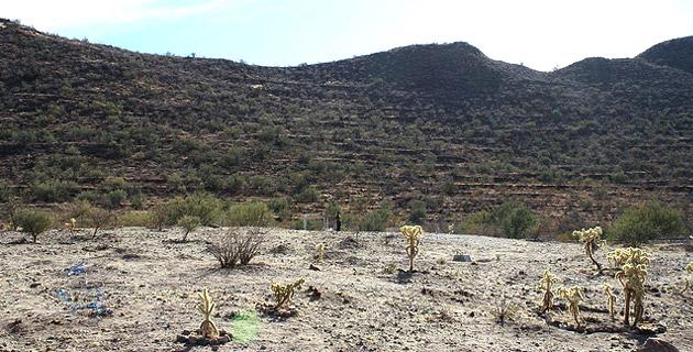 Cerro Trincheras, Sonora