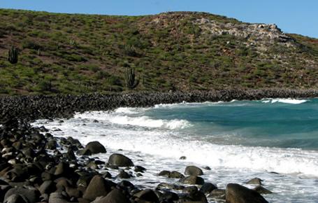 Isla del Golfo de California