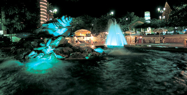 Vida Nocturna en Cozumel