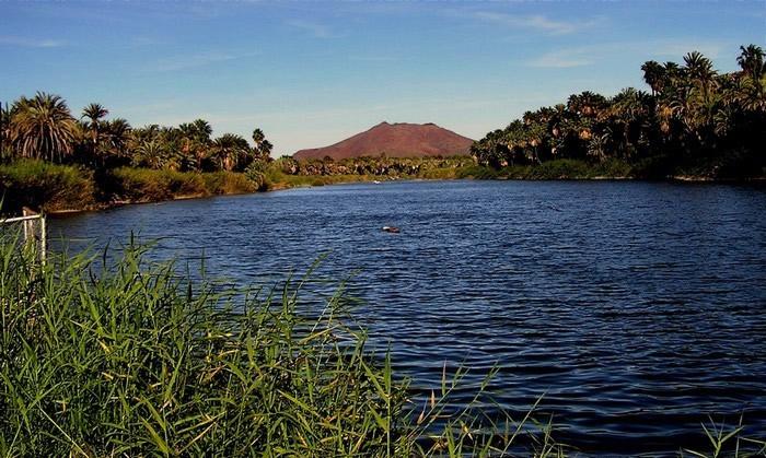 laguna san ignacio