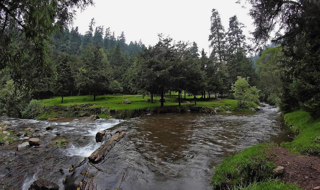 Parque Nacional los Dinamos