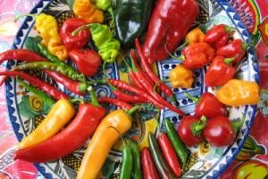 El Chile en la Gastronomía Mexicana