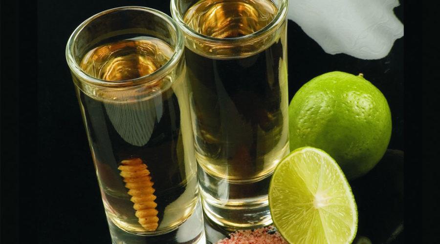 El Mezcal, la bebida tradicional mexicana