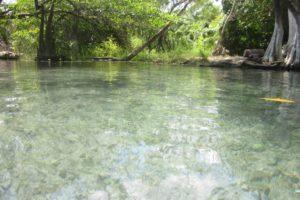 Recorriendo los Alrededores de Chetumal, Quintana Roo