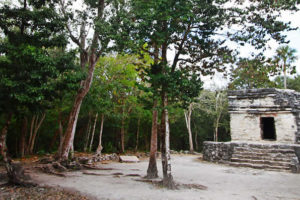 Zona Arqueológica San Gervasio, Quintana Roo