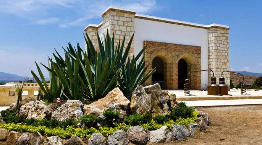 Casa Mezcal Oro de Oaxaca