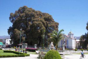 Comprando Mezcal en Santa María del Tule en Oaxaca