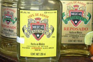 El Mezcal de Zacatecas