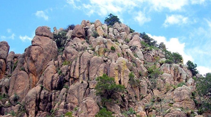 Sierra de Cardos en Zacatecas
