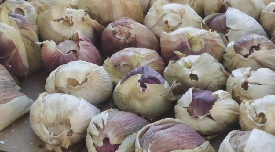 Receta Tamales de Harina con Atole de Tamarindo