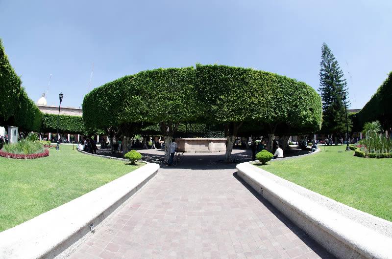 Jard n principal de celaya guanajuato turimexico for Jardin principal