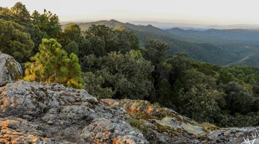 Parque de Aventuras Mazati en Sierra de Tapalpa