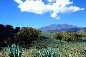 Reto Trivolcano en Jalisco