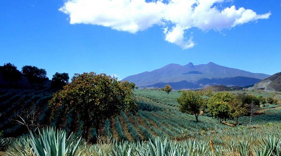 Volcán de Tequila
