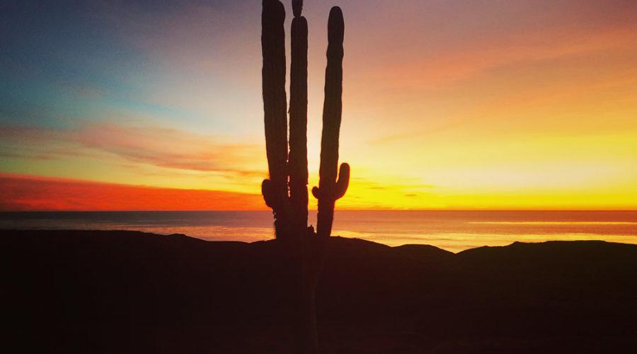 Bahía Tortugas en Baja California Sur