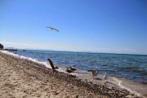 Playa La Ventana en Baja California Sur