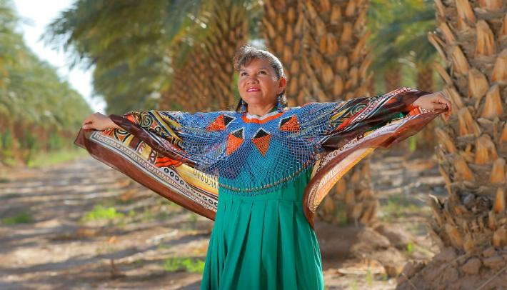 Grupos Étnicos de Sonora
