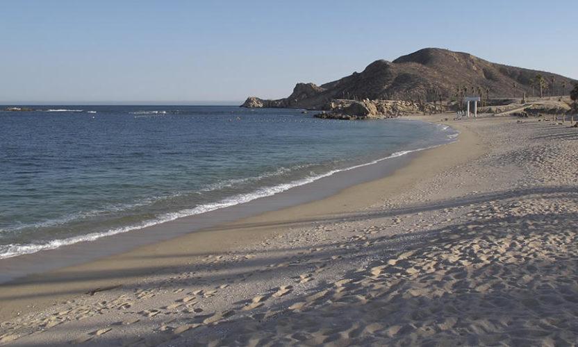 Juncalito en Baja California Sur