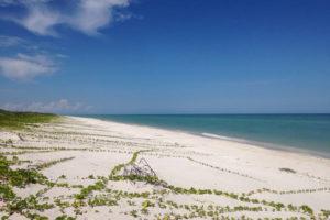 Playas de Sabancuy en Campeche