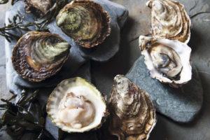 5 Consejos para Degustar Ostiones