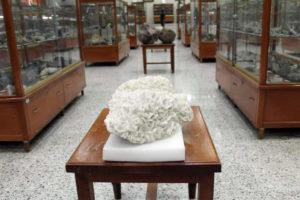 Museo de Minería en Guanajuato