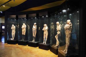 Museo de las Momias Viajeras en Guanajuato